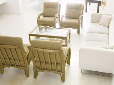 rattan deco sa bambou et rotin articles meubles de maison sur europages. Black Bedroom Furniture Sets. Home Design Ideas