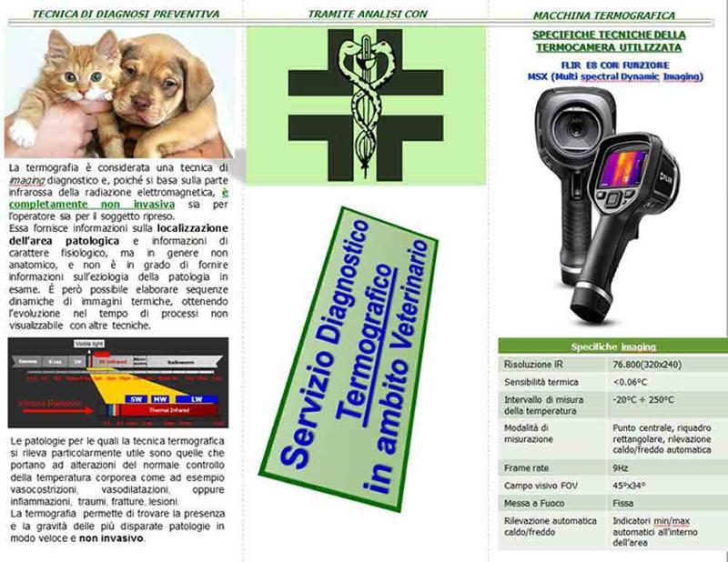 Lo Studio di Ingegneria Fabbri si occupa di effettuare analisi termografiche in ambito veterinario per riscontrare in modo completamente non invasivo la presenza di patologie infiammatorie in atto