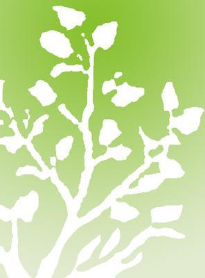 Servizi di manutenzione aeree verdi per enti, aziende e parchi commerciali.