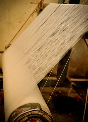 Thread rolled onto a beam prior to the initiation of the weaving process