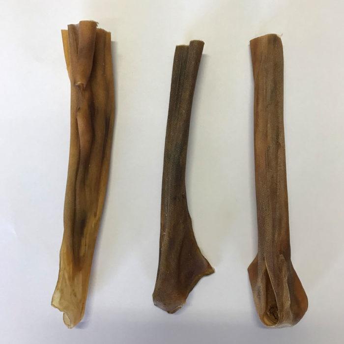 Dried horse skin