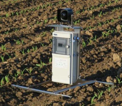 Effaroucheur sonore AviTrac 18M protégeant un champs de maïs