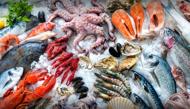 QUEEN FISH S.r.l. pesce fresco e surgelato