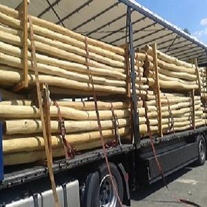 sapwood- free acacia poles