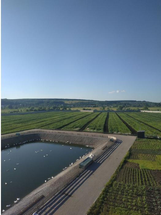 Ecological farm