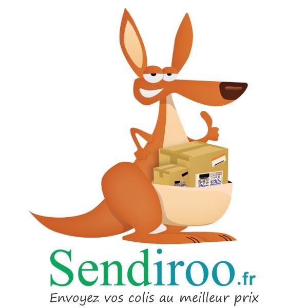 Envoyez vos colis au meilleur prix grâce au comparateur de Sendiroo, votre nouveau partenaire logistique.