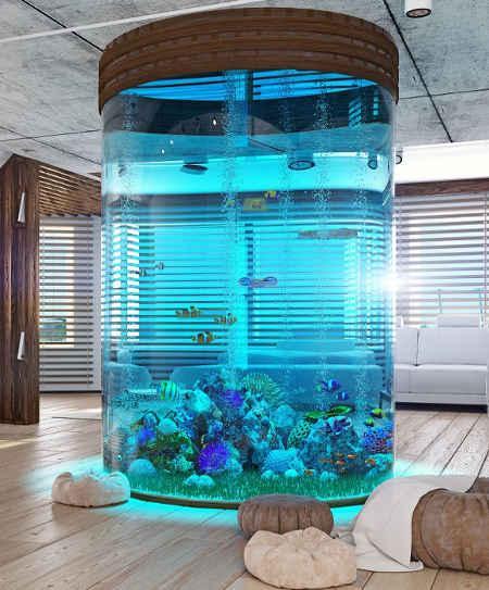 Aquarium Rund, Zylinder aus Plexiglas®, Acryl und Glas. Faszinierend und extrem ansprechend die Runde Form des Aquariums. In Acryl ist alles möglich. Höhe und Durchmesser sind keine Grenzen gesetzt.