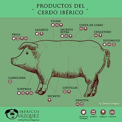 Despachamos carnes de cerdo ibérico frescas y congeladas, a granel y envasadas en distintos formatos.