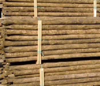 pali di pino marittimo ,garanzia di 20 anni        trattamento in autoclave                                             certificazione massima in classe 4 special                     laboratorio fcba