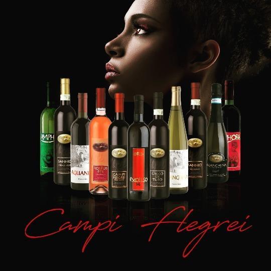 Les vins de la Campanie - Italie