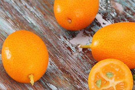 kumquat Mavromatis