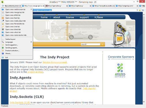 El navegador de Internet es la característica principal de BriskBard