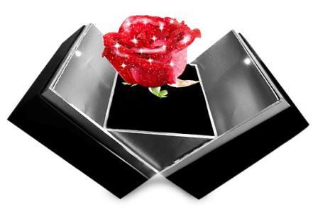 Fire red diamond rose button
