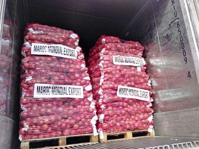 Exporters Morocco onion to Europe and Africa