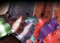 Trattiamo esclusivamente pellami esotici scelti e selezionati per i nostri clienti. Coccodrillo, Alligatore, Struzzo. I pellami soni sia per abbigliamento,calzatura,  pelletteria che per l'arredamento