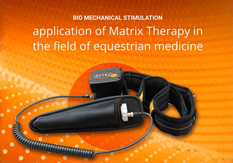 Veterinary Bio Mechanical Stimulation (BMS) handheld device with battery support