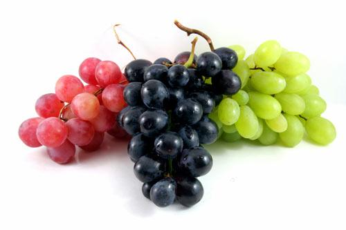 Tropical fruits from overseas: grapes, melons, citrus fruits, apples, pears, avocados, and many more. According to customer wishes in conventional or in organic quality as GlobalG.A.P. certified.