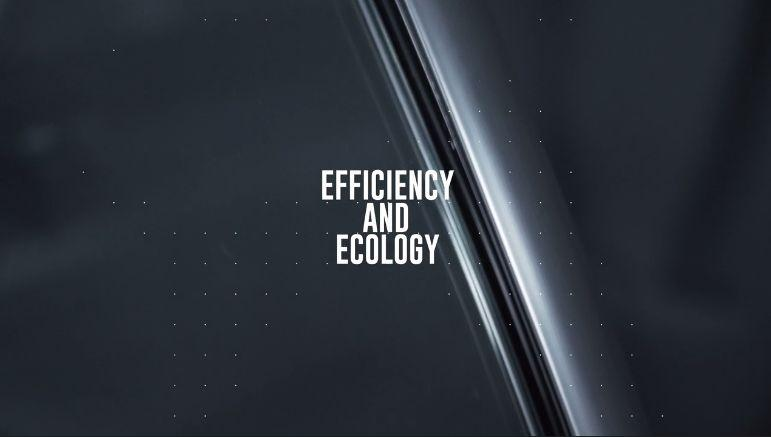 Efficiency and Ecology