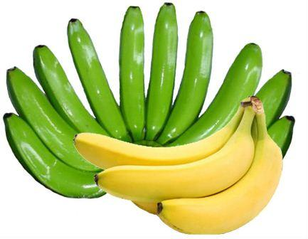 GROSS WEIGHT, 40 Libras. Gajos/ Box 16 -18. Value Case Fob Bananas, $ 8.5 USD Box