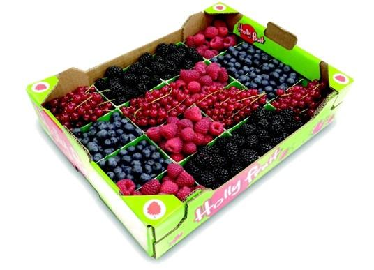We propose custom packaging, with Strawberries, Raspberries, Blackberries, Red Currents, open punned and with lids.