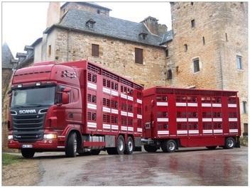 Furgoni trasporto combinato a più piani di carico per autocarri e rimorchi Attrezzature concepite per il trasporto combinato di animali e pallets su lunghe distanze con il massimo delle prestazioni.