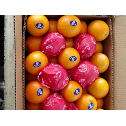 Commerce international de fruits - Import export de fruits