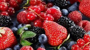 Produtor de Frutos Vermelhos