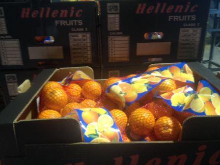 Valencia oranges caliber 6-7 in 2kg girsacks and 20kg carton box