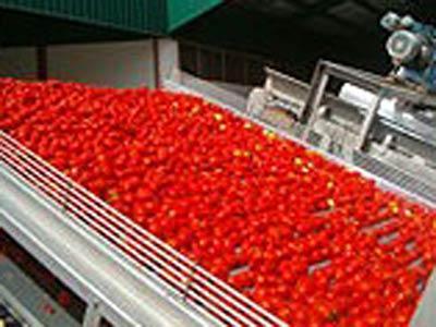 Conservas de legumbres y hortalizas
