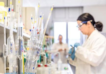 Labor und Analysen