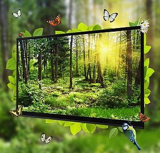 TFT Displays liefern brillante Bilder und sind aus dem Alltag nicht mehr wegzudenken. Full HD und 4K ist im TV Markt inzwischen Standard.