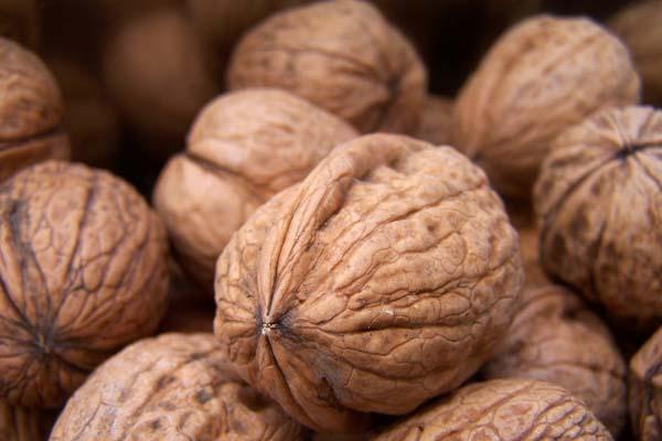 Stifanuts Walnuts Chandler Inshell - Chile