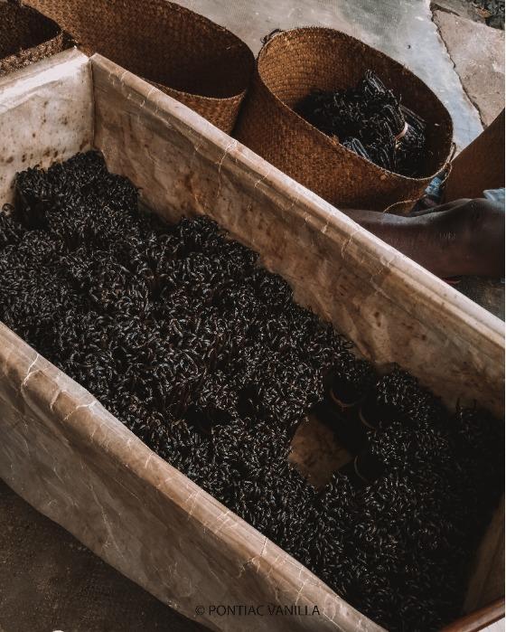 ready export beans