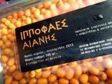 Packaging: Fresh buckthorn fruit harvested in 2014, net weight 150gr, 500gr and 1 kg, kept in refrigerator.