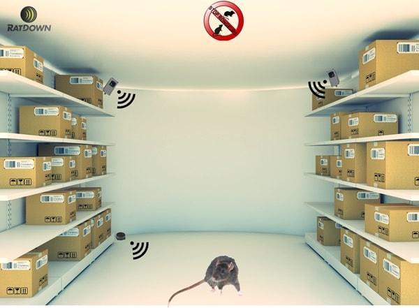 Découvrez la gamme complète de dispositifs professionnels RATDOWN pour déloger et chasser efficacement les rats et souris de votre environnement professionnel. En prévention ou traitement.