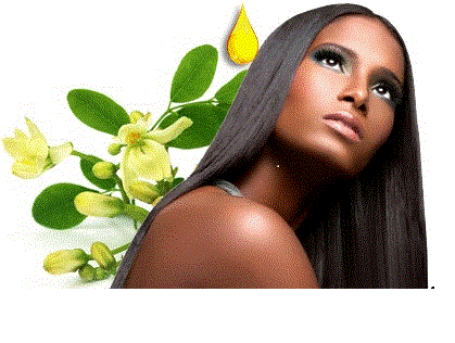 Moringa Oil makes dry scalp dandruff-free and the hair soft.