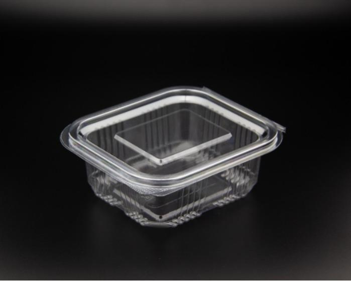Disposable Seal Food Container EFE-250