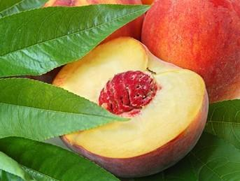 Peaches handled from PERMANTO, derived from our producers from regions Imathia, Pella and Pieria in Greece.