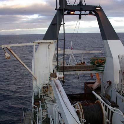 Pescados MAPESCA