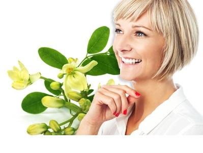 Moringa Oil penetrates into the skin, it forms collagen and tightens the skin.