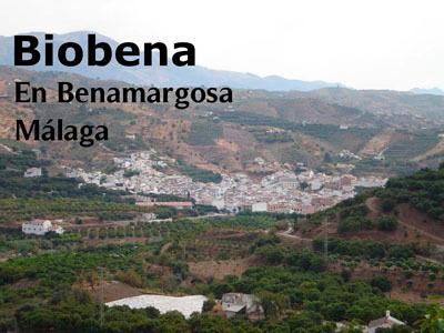 Población donde está situada nuestra empresa de productos ecológicos
