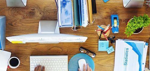 Beratung und Projektmanagement