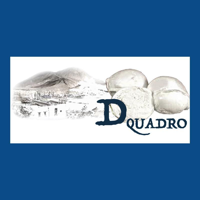 D-QUADRO SRL distribuzione alimentare