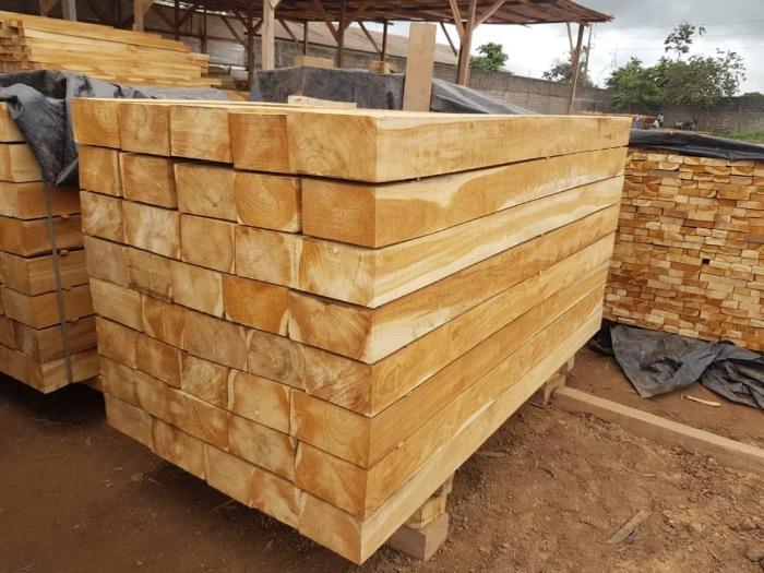 Producteur bois de teck
