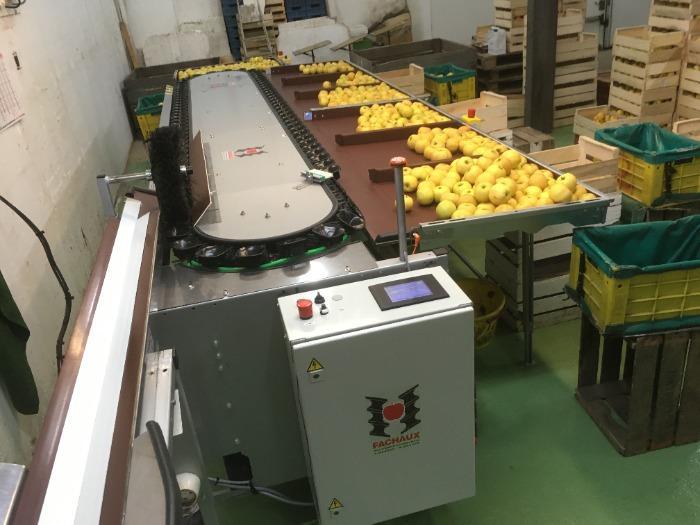 calibreuse electronique pommes poires