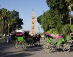 Urlaub und Reisen in Marokko mit dem Reisespezialist Ritz-Reisen http://www.ritz-reisen.de/Marokko-Reisen