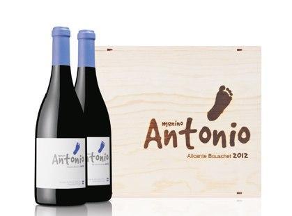 Menino Antonio 2012