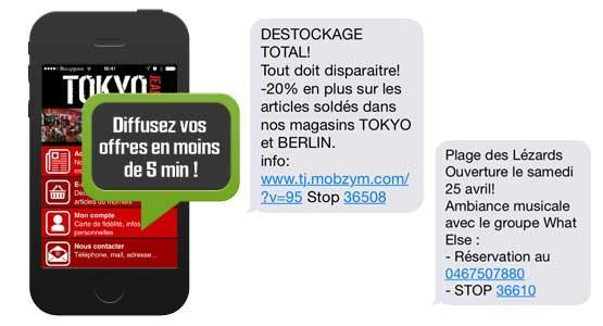 Envoyer un SMS Professionnel