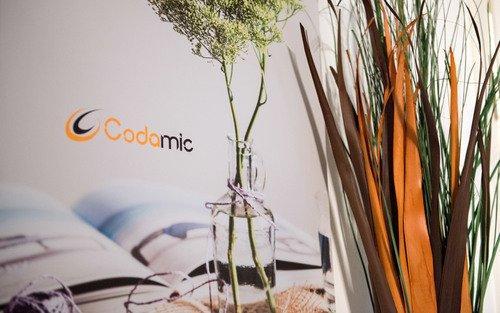 Codamic Innovations