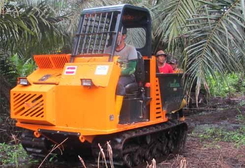 Track mini dumper for palm oil planation
